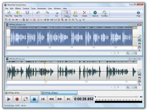WavePad Sound Editor Crack 2021 Download from allcracksoft.org
